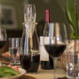 Vinturi Reserve Essential Red Wine Aerator & Carafe Set
